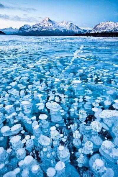 National Geographic - лучшие фото природы