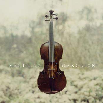 (Trip-Hop/Downtempo/IDM/Experimental) Saltillo - Ganglion (Reissue) - 2011, FLAC (tracks+.cue), lossless