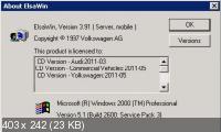 ELSA 3.91 VW  05.2011 (16.11.11) Многоязычная версия