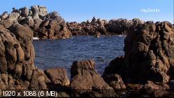 Освежающий океан.Ритмы воды / Ocean Freshness / Water Rythms (2011) HDTV 1088i