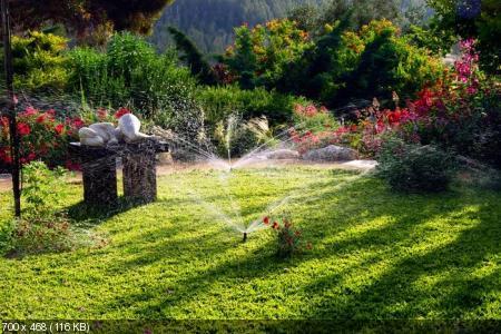 Фото - Ландшафтный дизайн (декабрь 2011)