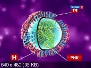 Наука 2.0 - Поможет ли прививка против гриппа? (2011) SATRip