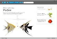 Мои питомцы. Рыбки -  электронная энциклопедия