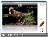 WinSnap 4.0.1 Portable 2012