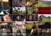 BBC. Мир после Стоунхенджа (1-4 серии из 4) / BBC. The World After Stonehendge (2011) SATRip