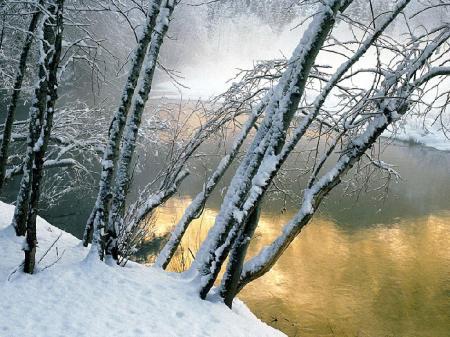 Новая коллекция обоев на тему Зима (2012)