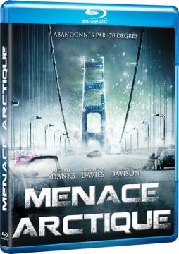 Буря в Арктике / Arctic Blast (2010) BDRemux 1080p