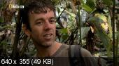 По следам мифических чудовищ. Обезьяночеловек с Суматры (2010) HDTVRip
