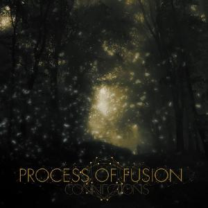 Process of Fusion - Connections [EP] (2011)